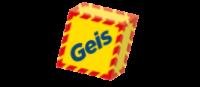 Integracja Geis z systemami ERP